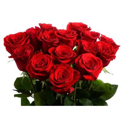 Букет красных роз - 15 шт.